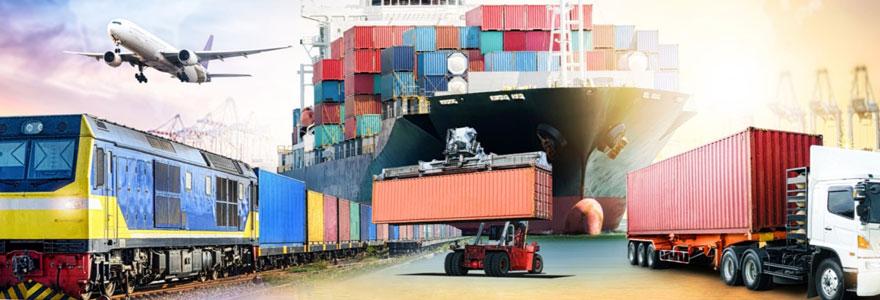 Expédition de marchandises à l'étranger : trouver un transporteur spécialisé en ligne